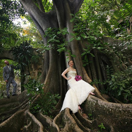 Plantation Wedding